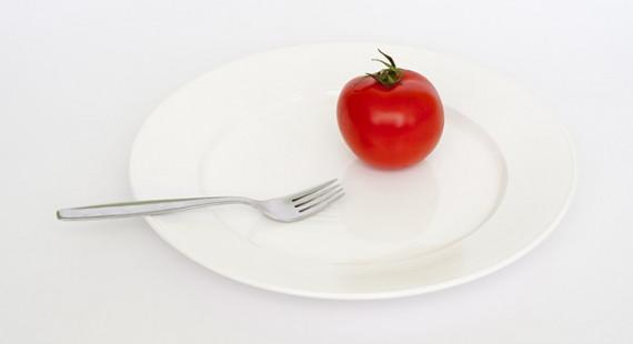 plate-403597_640