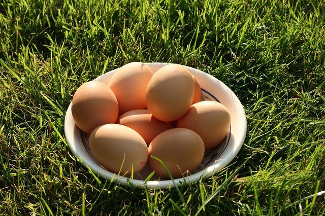 vajíčková dieta jídelníček