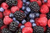 Vitaminy, nepostradatelná součást našeho těla – 3. díl – Vitaminy rozpustné ve vodě