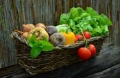 Vitaminy, nepostradatelná součást našeho těla – 2. díl – Vitaminy rozpustné v tucích